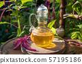 Amaranthus caudatus oil and amaranth flowers 57195186