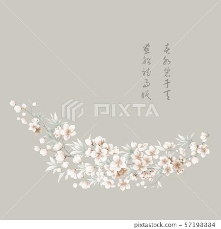 中國風水彩花卉集 57198884