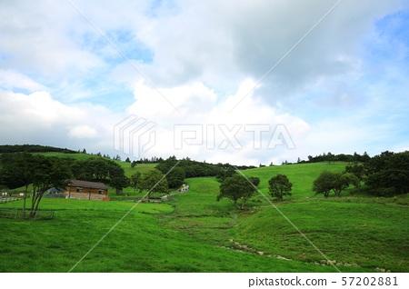 아름다운목장풍경,푸른초원 57202881