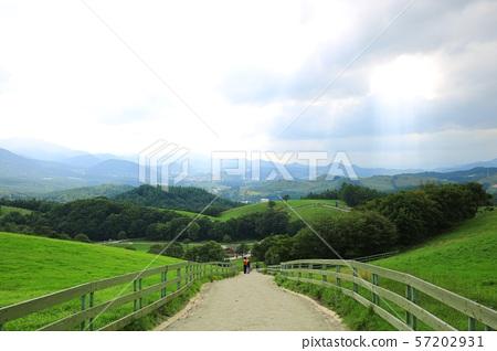 아름다운목장풍경,푸른초원 57202931