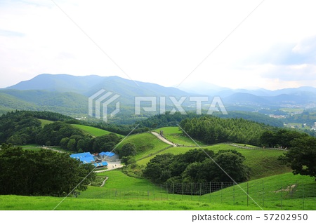 아름다운목장풍경,푸른초원 57202950