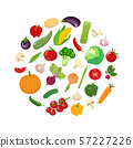 Variety vegetables in a circle. Vegetarian organic 57227226
