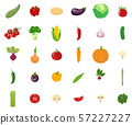 Set of vegetables isolated on white background 57227227