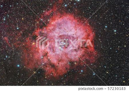 Rose Nebula 57230183
