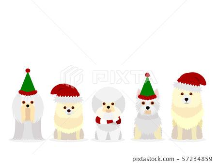 狗聖誕套 57234859