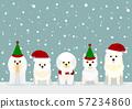 개 크리스마스 배경 57234860