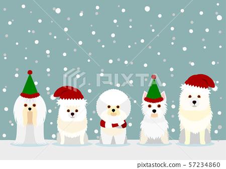 狗聖誕節背景 57234860