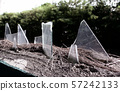 Broken sharp glass decoration on top of fence for 57242133