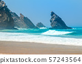 Rocky Ocean Shore and Surf 57243564