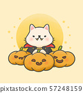 Cute cat wearing dracula costume with pumpkins 57248159