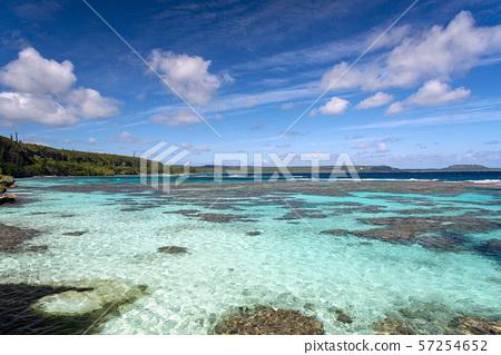 New Caledonia Loyalty Islands Male Island Coral Reef on Tadine Coast 57254652