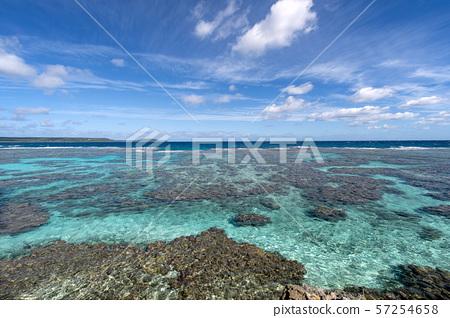New Caledonia Loyalty Islands Male Island Coral Reef on Tadine Coast 57254658