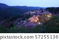 나라 요시노 산 아래 천 그루 벚꽃 라이트 업 57255136