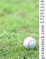 야구 공 57255314