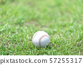 ลูกเบสบอล 57255317