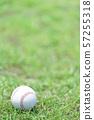 야구 공 57255318