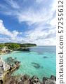 新喀裡多尼亞Loyalty Islands男島Peje海灘 57255612