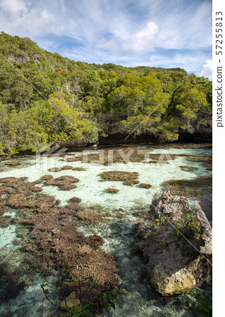 New Caledonia Loyalty Islands Natural Aquarium on Male Island 57255813