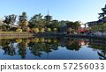 奈良Sarusawa池塘 57256033