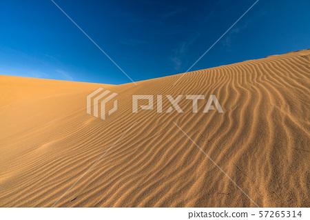 《鳥取縣》鳥取沙丘 57265314