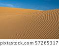 《鳥取縣》鳥取沙丘 57265317