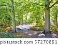 White woden bridge in the park in autumn season. 57270891