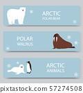 Arctic animals and north pole cartoon banners set, vector illustration. Antarctica and North Pole 57274508