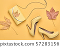 Autumn Fashion Clothes Flat lay, Leaf. Fall Outfit 57283156