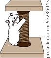 고양이 57286045