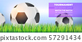 Football balls in green grass, close up on 57291434
