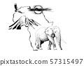 Elephant on Africa map background with Kilimanjaro 57315497