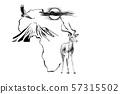 Impala on Africa map background with Kilimanjaro 57315502