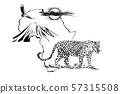 Leopard on Africa map background with Kilimanjaro 57315508