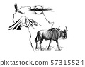 Wildebeest on Africa map background with 57315524