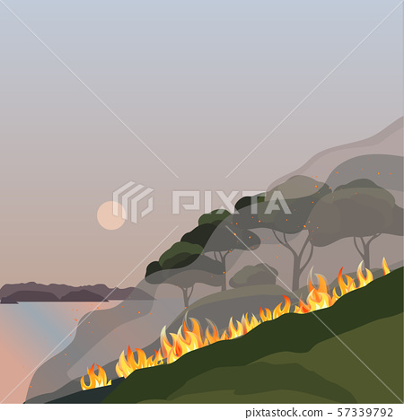 Forest fires disaster green trees flat vector illustration 57339792
