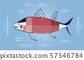 TUNA Sashimi Meat cut guide chart 57346784