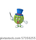 Magician watermelon character mascot for symbol healthy fruit 57350255