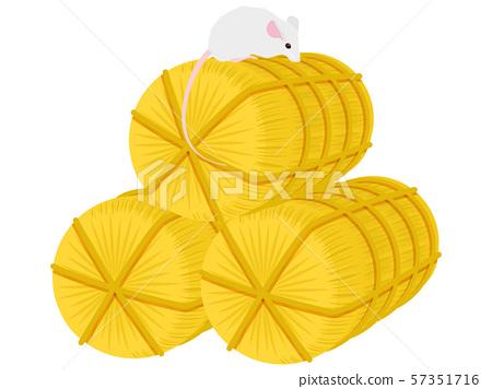 老鼠和米糠 57351716