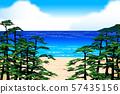 Pine sea 57435156