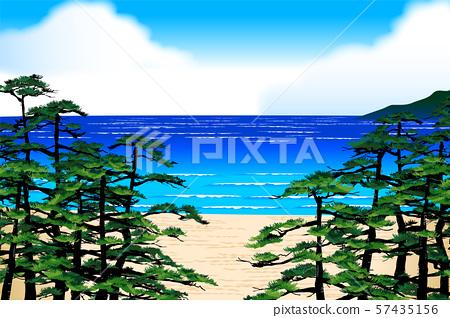 松樹海 57435156