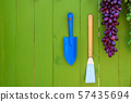 garden tools or agricultural tool on wooden green wall. 57435694