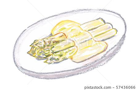 White asparagus 57436066
