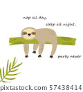 Funny sloth napping on a tree. Funny illustration 57438414