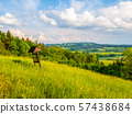 Summer landscape with lush green meadows, forest, blue sky and white clouds 57438684