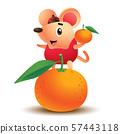 Cartoon cute little rat stand on mandarin orange. Greetings from the golden rat. Rat chinese new year 2020 - vector mascot 57443118