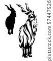 markhor mountain goat black vector outline and silhouette 57447526