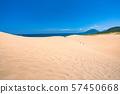 <鳥取縣>夏季鳥取沙丘/自然景觀 57450668