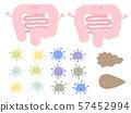 귀여운 대장과 장내 환경 설정 57452994