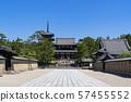[Nara] Horyuji Temple 57455552