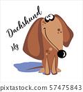 My Dachshund. Lettering. A cartoon dog. Funny, funny. Vector illustration. 57475843